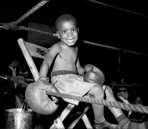 Little_boy_boxer